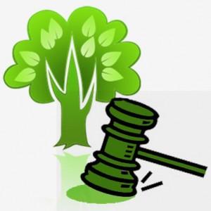 Imagem - Legislacao Ambiental