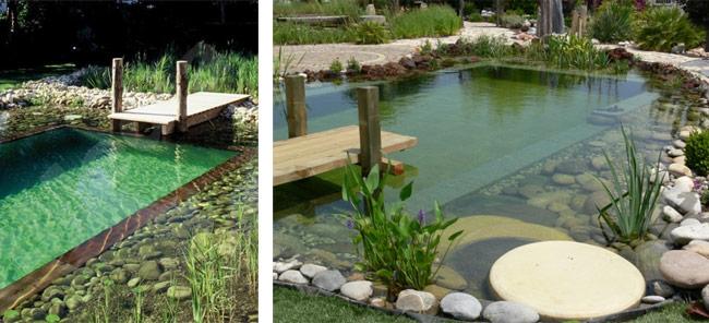 piscina-ecologica-3-1