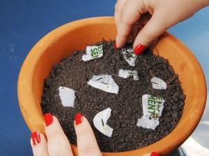 S‹o Paulo-16.08.2010-Papel semente que acompanha a revista Vital para ser plantado.Passo 4 Colocar as sementes na terra-FotoÉNiels Andreas