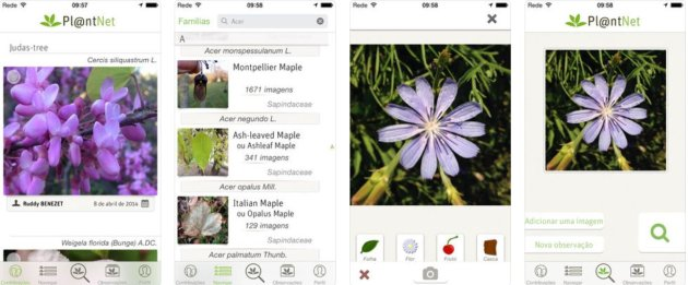 Aplicativo Plantas - Plantnet